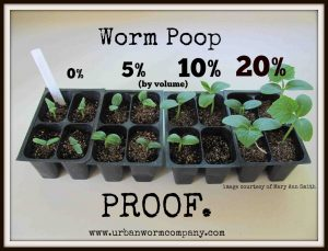 Vermicompost-benefits-mary-ann-smith