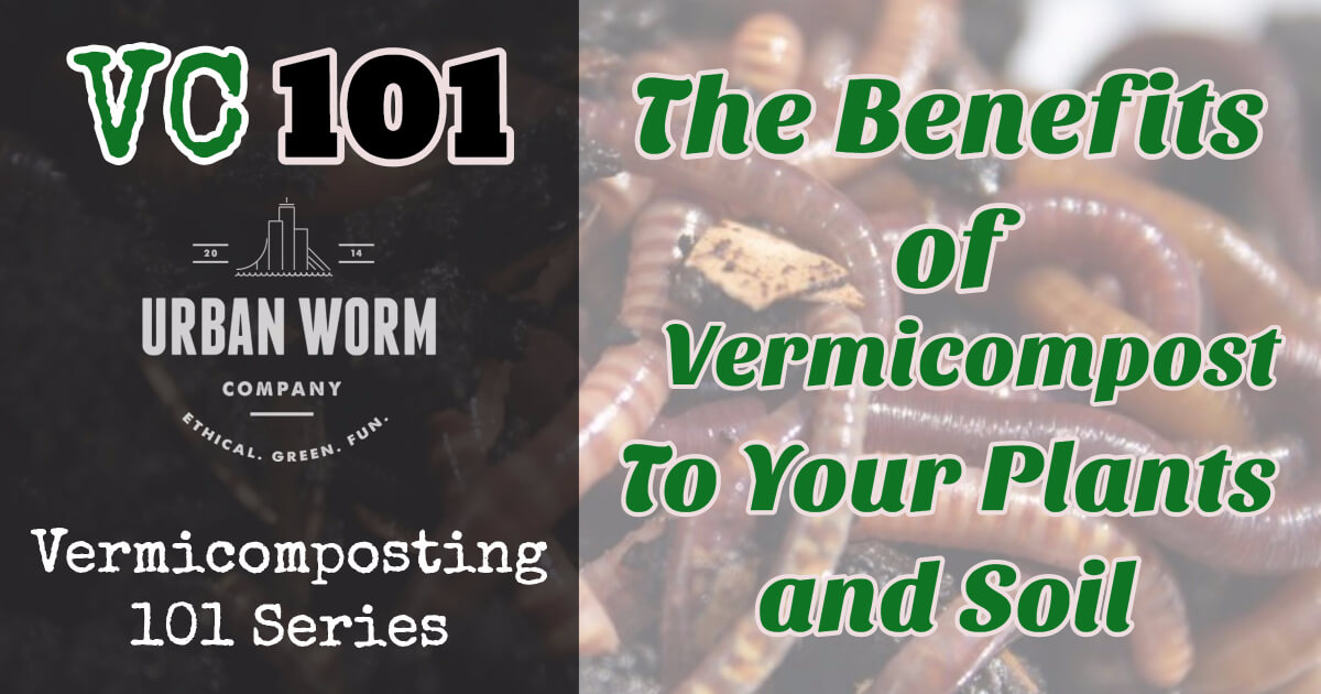 vermicompost-benefits