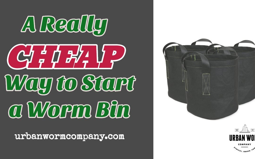 A Really Cheap Way to Start a Worm Bin
