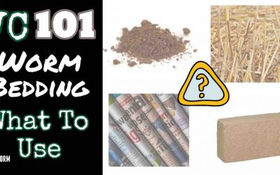 Vermicomposting 101: 8 Awesome Choices for Worm Bedding