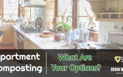 Apartment Composting: What Are Your Options?