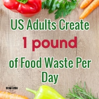 Americans create 1lb of compostable food waste per day