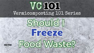 should-i-freeze-food-waste