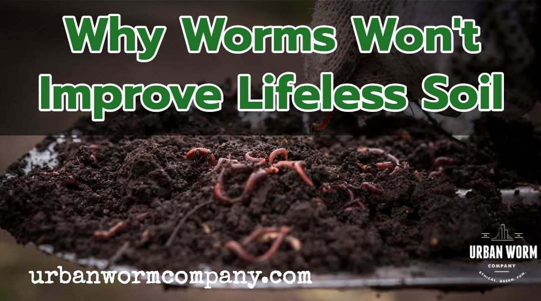 will worms improve my soil