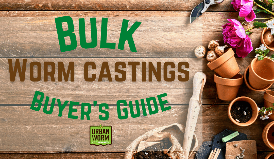Bulk Worm Castings Buyer's Guide: What To Expect When Buying Black Gold